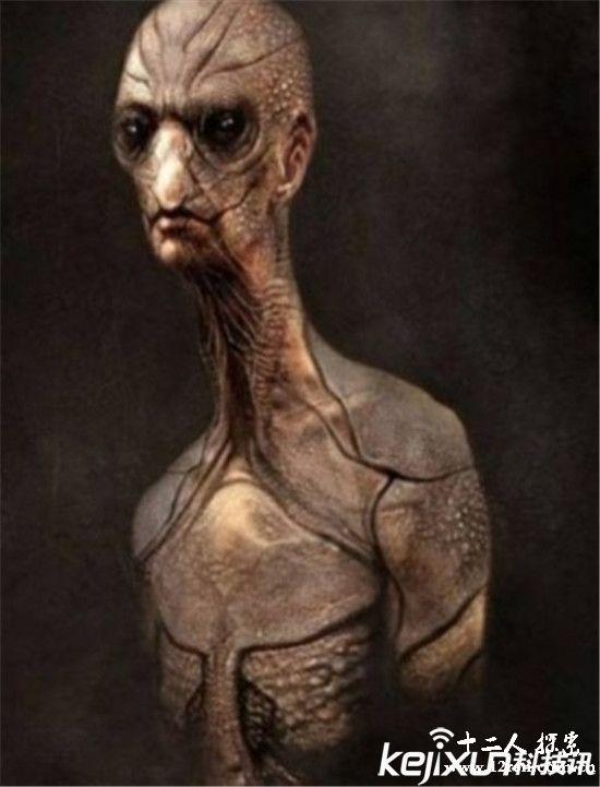 外星人真实样貌曝光 和人类差别不大