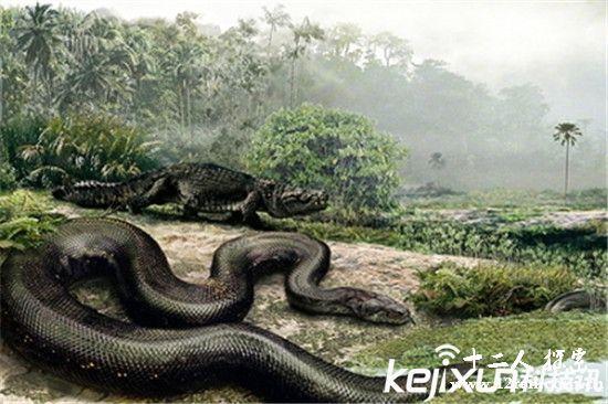 世界上最大的蛇史前生物泰坦蟒将复活?惊呆