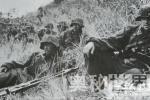 揭秘二战德军最悲壮惨烈的突围战:切尔卡瑟战役(图)【图文】