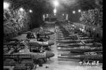 二战德国到底投入了多少部队,投降了竟然还有250万