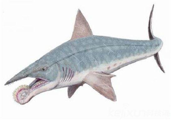 考古发现!地球已灭绝数亿年的五大惊人动物【图】
