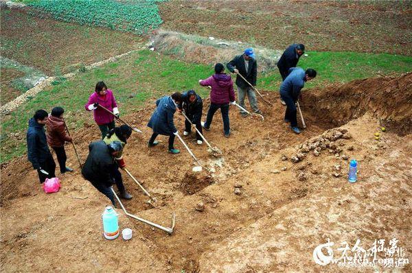 原文配图:村民们正在发掘旧石器考古探方时的情景。
