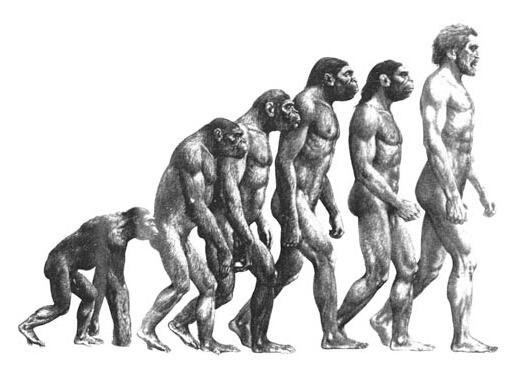 一万年前人类已会煮菜 利比亚发现古代容器找到证据