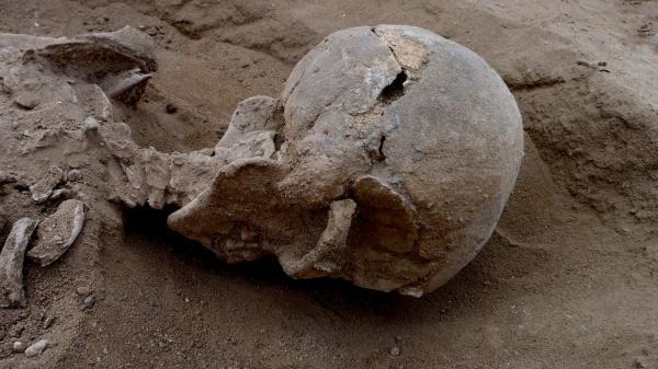 """一万年前人类就已发生""""大屠杀""""?"""