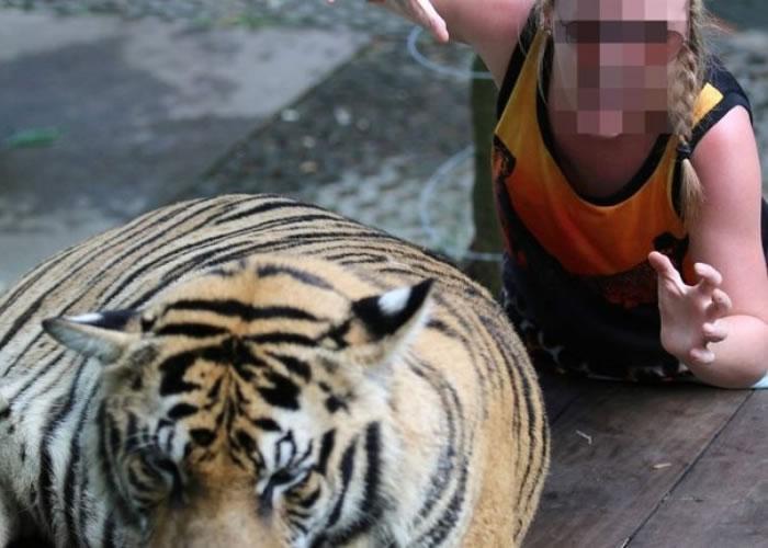 世界动物保护协罗列出10种最残忍的野生动物