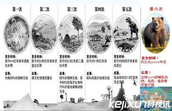 第六次大灭绝来临:大象犀牛等大型动物将全部灭绝