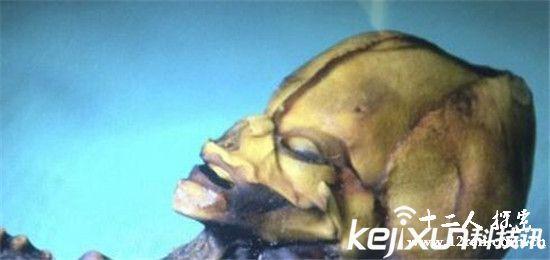 美国政府揭秘女宇航员被外星人奴役内幕 太可怕!